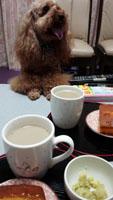 もうお茶の時間?2