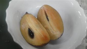 サポジラ試食②_R