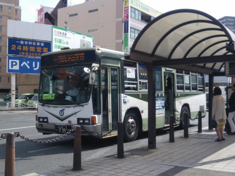 DSC_0641 (800x600)