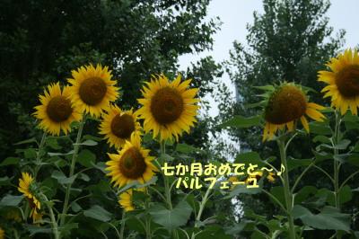 150901-3.jpg