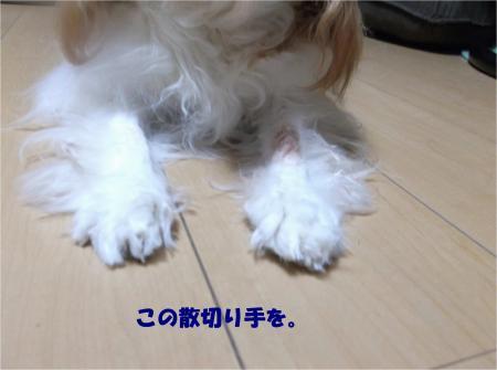04_convert_20151001173433.jpg