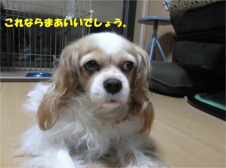 05_convert_20151001173443.jpg