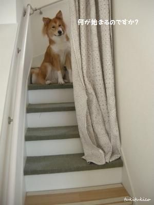 2度目の階段DIY1