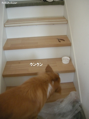 2度目の階段DIY2