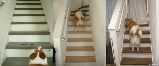 階段のカーペットを貼る3