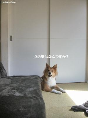 和室のドア1