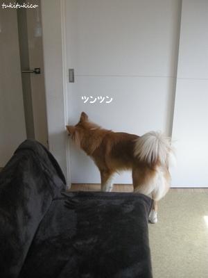 和室のドア2