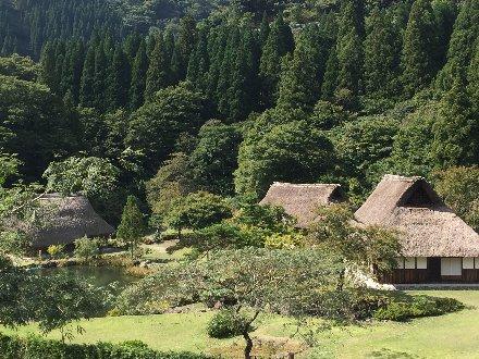 fujihashijo-016.jpg