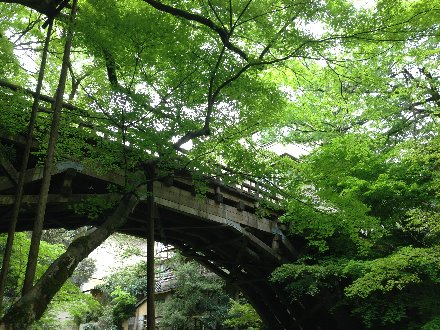 kourogibashi-016.jpg