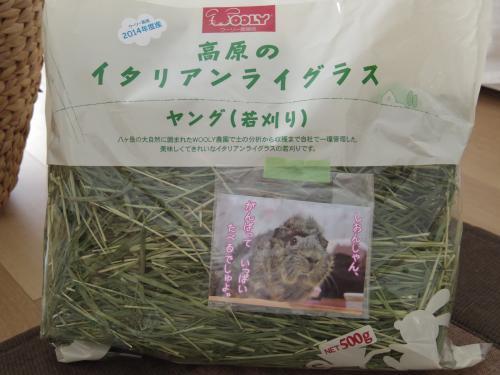 ぶぶたんの牧草1