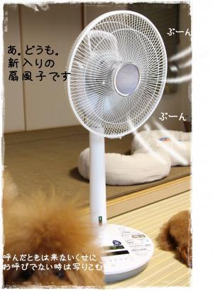 senpuki2_s.jpg