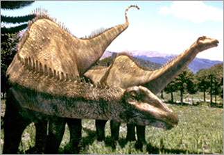 paleontologydictionary-ja-56.jpg
