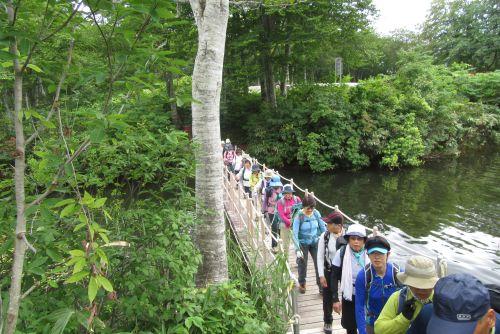 地蔵池の浮橋