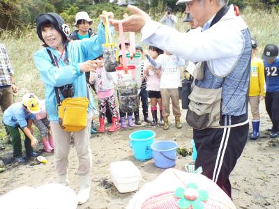 水質浄化実験