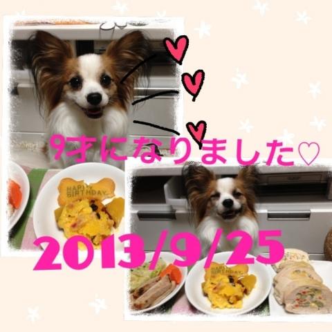 blog_import_52f671091e813.jpg