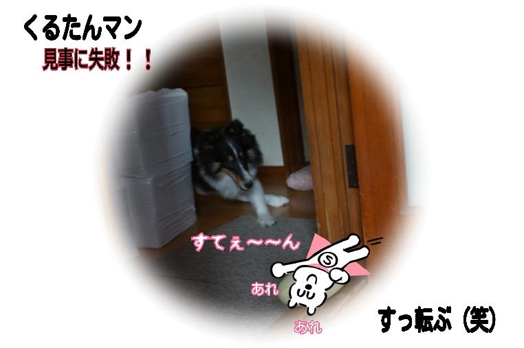15-09-22-10-41-40-429_deco.jpg