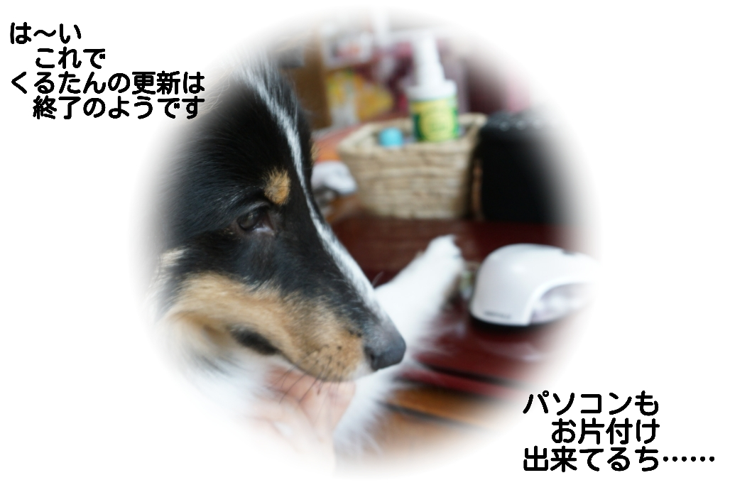 15-09-22-14-33-08-112_deco.jpg