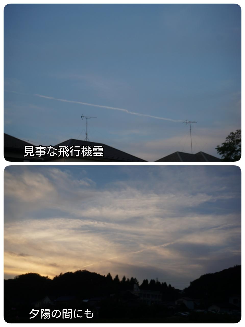 15-09-25-13-16-12-793_deco.jpg