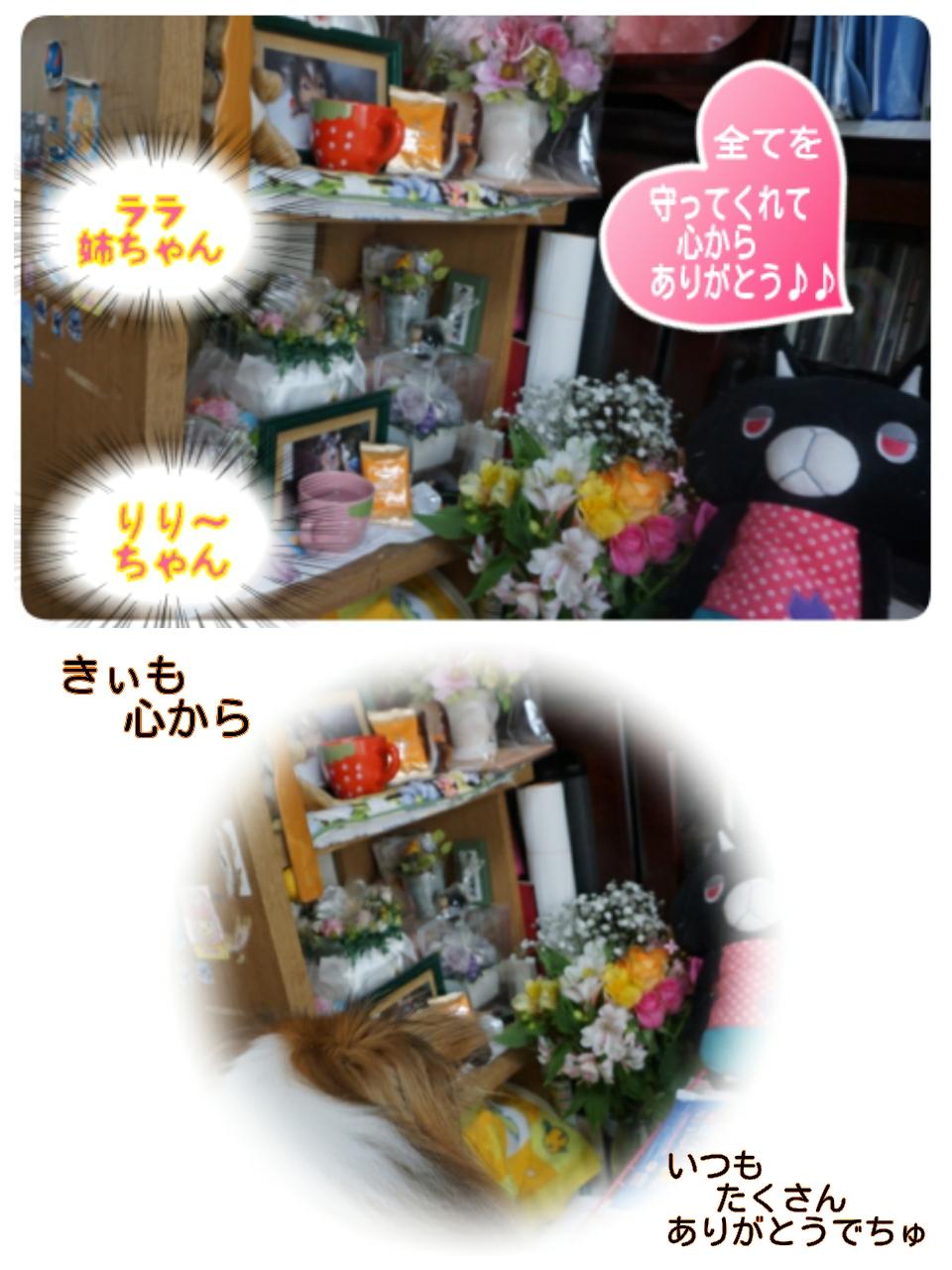 15-10-06-17-52-08-605_deco.jpg