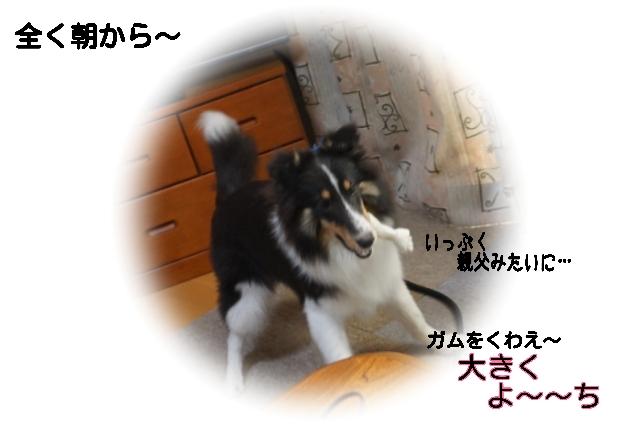 15-10-13-09-39-07-241_deco.jpg