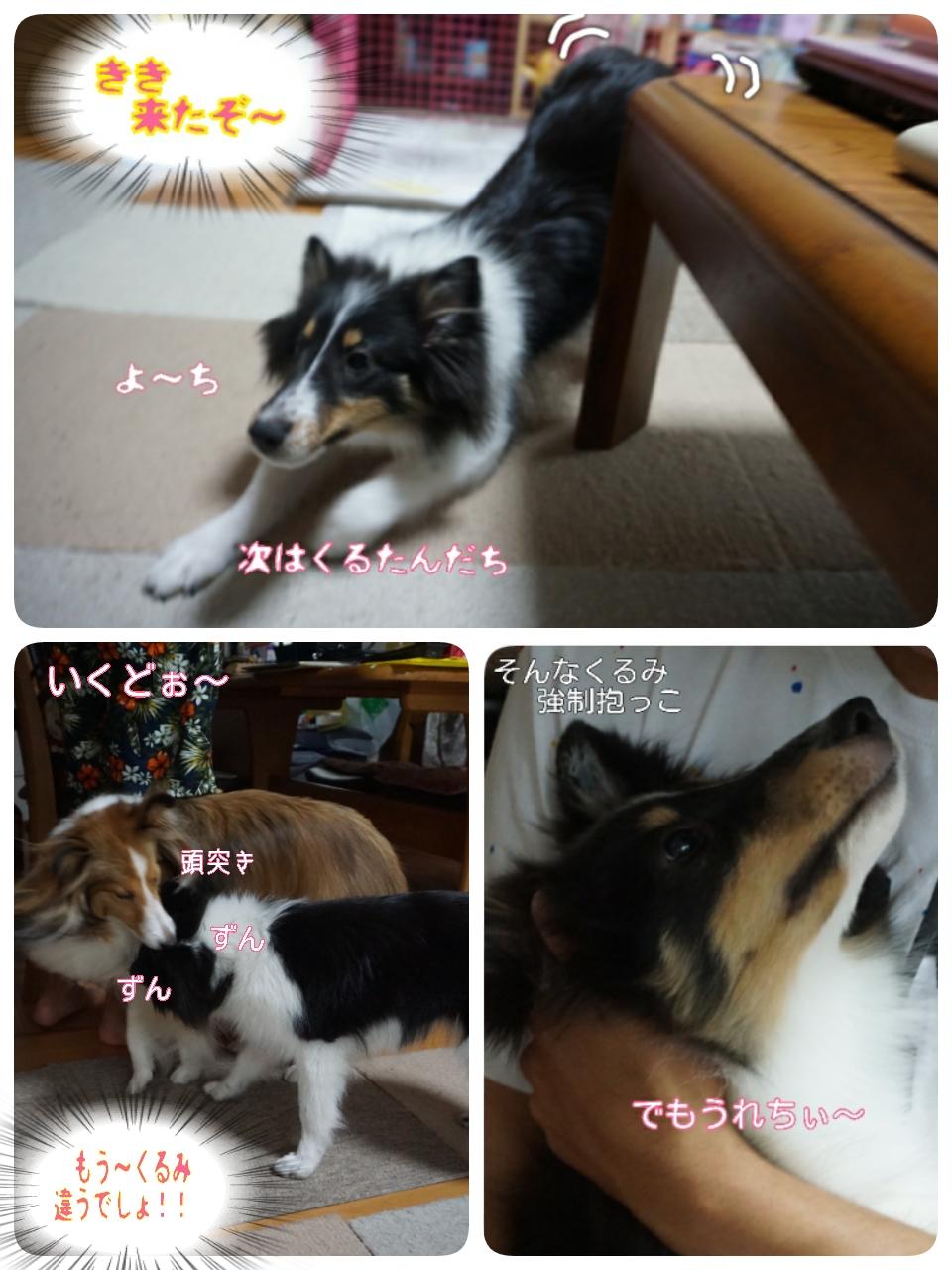 2015-08-22-01-20-11_deco.jpg