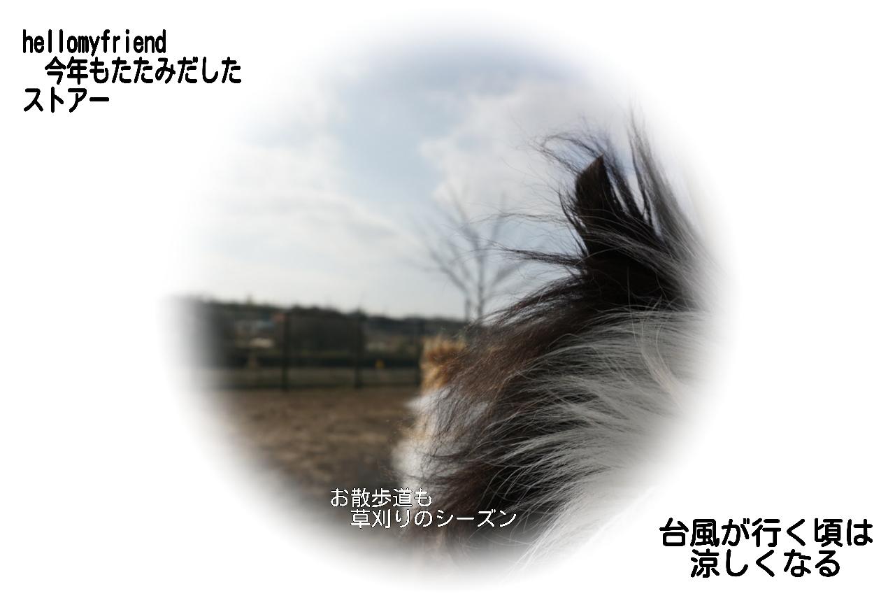 20151016040959453.jpg