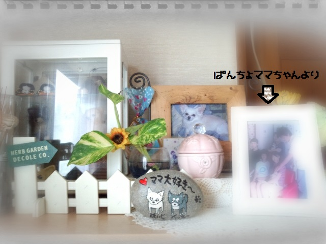 CYMERA_20150822_130723.jpg