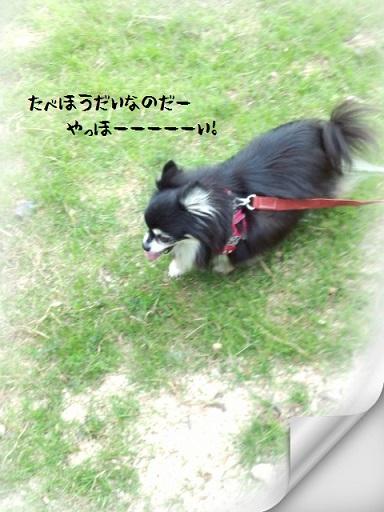 CYMERA_20150919_152042.jpg