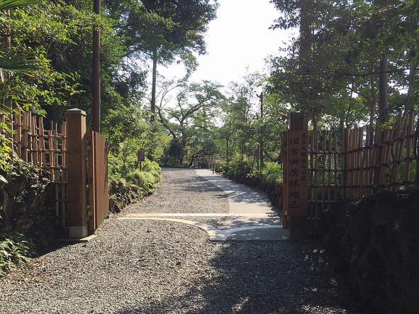 shigeru-1