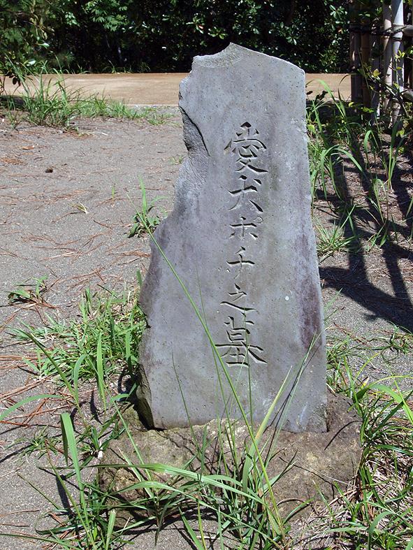 shigeru-5