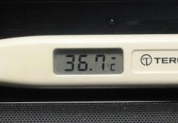 微熱だぁ20150930朝