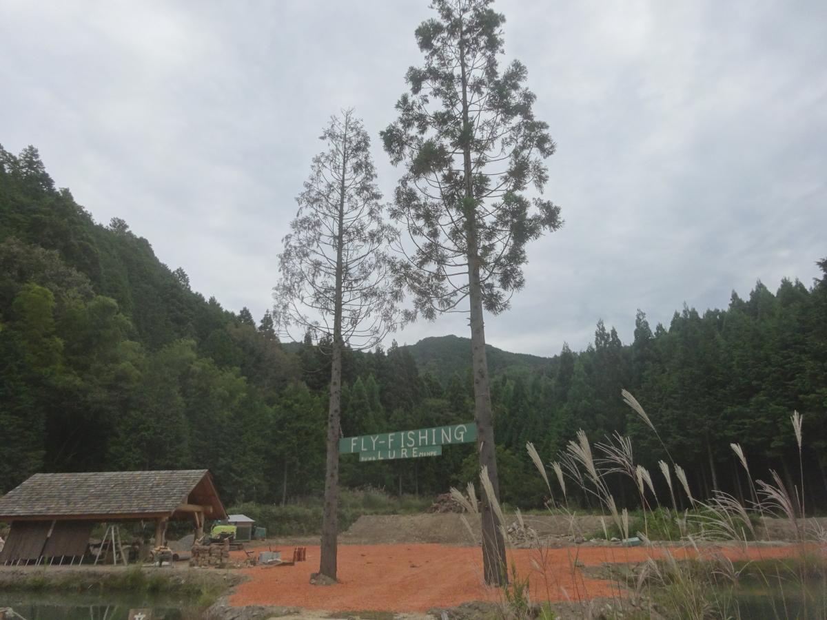 クワモンペ