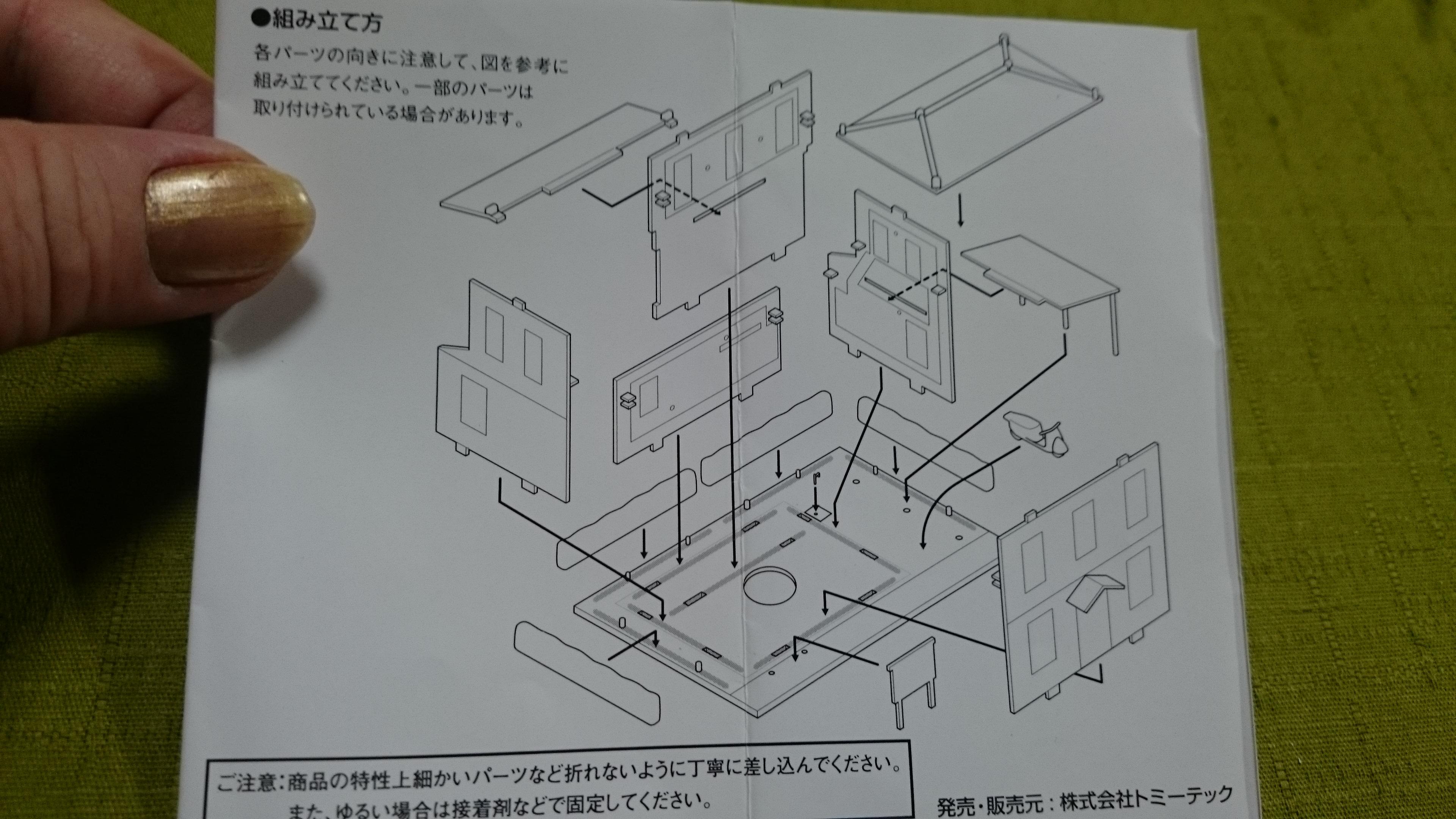 3、DSC_9446