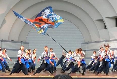 yoyogi 11CIMG5210 (6)