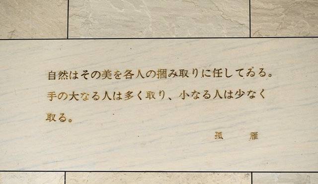 DSC008802015.jpg