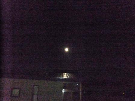 中秋の名月①