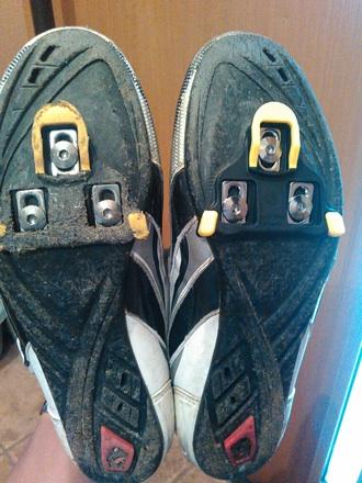 20150826_shoes.jpg