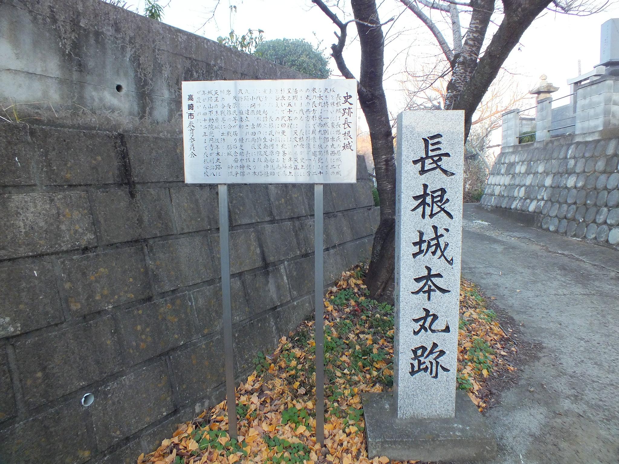 w300h300565MA8P1長根城・本丸跡