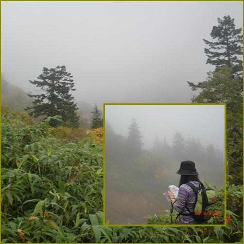 005 霧の中
