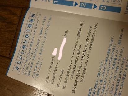 P1020813.jpg