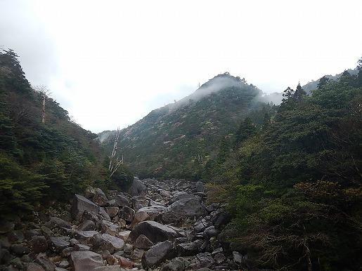 普段(4月撮影)の安房川