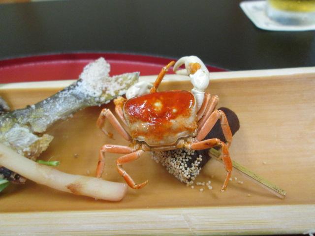 京都ツアー 109