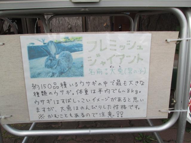 カツ丼部 138