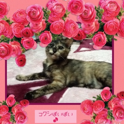 fc2blog_201508310955047fd.jpg