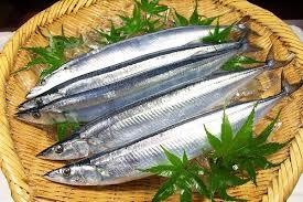 秋刀魚 生