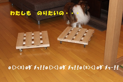IMG_6451.jpg