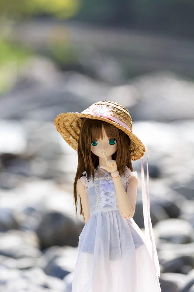 _MG_0131-2.jpg