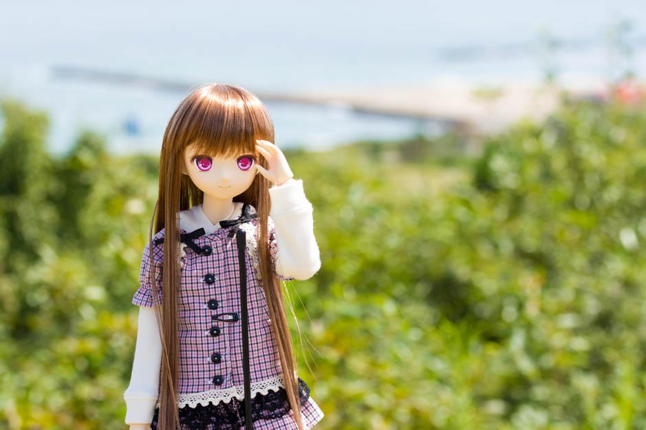 _MG_0333.jpg