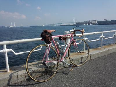 photo_derosa_yokohama_1012_19_2015_1012.jpg