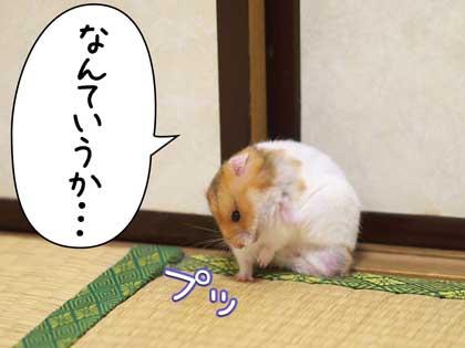 fuki6.jpg
